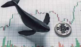 Bitcoin Balinaları Etkilerini Hissettirmeye Devam Ediyor