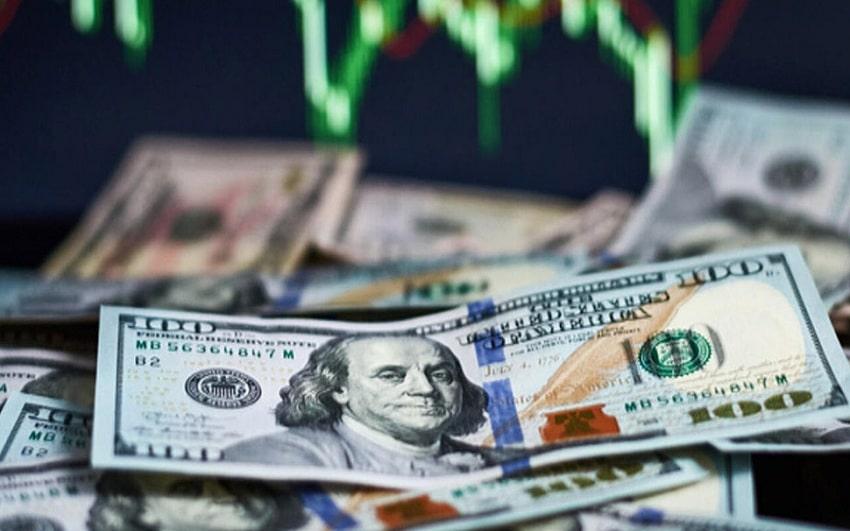 TL Yüzde 10 Değerlendi, Vatandaş Yine Dolar Aldı