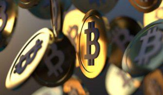 Bitcoin Dünya'nın Yüzde 2'sine Ulaştı!