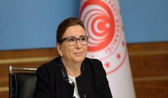Ticaret Bakanı Pekcan'dan AB'ye Çağrı