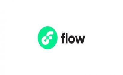 Flow Coin Nedir?