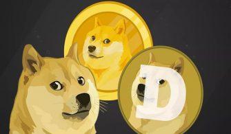 DOGE Kurucusunun Elon Musk'tan İlginç Talebi