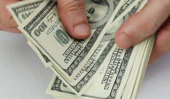 Dolar Kuru Son İşlem Gününde Dalgalandı